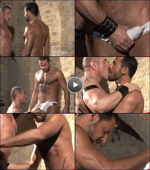 gay celebrities video